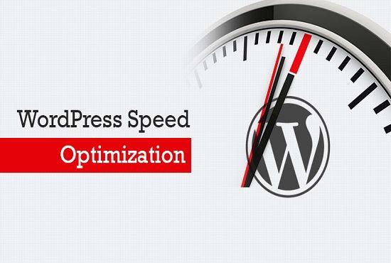 Do wordpress speed optimization with gtmetrix and google pag