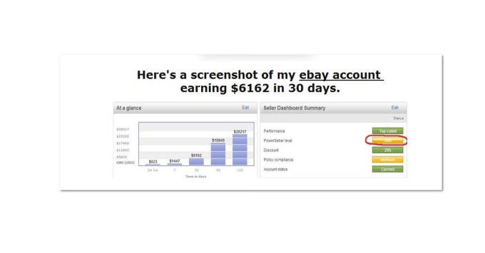 show how I make over 20,000 per month selling on ebay and amazon