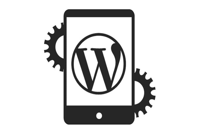 Optimize your wordpress blog for faster page speed by Richa_