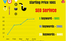 provide premium monthly seo service