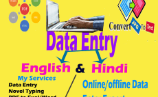 24 Best Hindi Typing Services To Buy Online | Fiverr