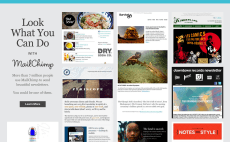 24 best newsletter services to buy online fiverr