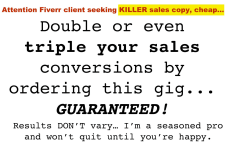 Hire A Freelance Copywriter To Write Effective Ad Copy Fiverr