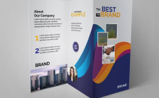 24 Best Trifold Design Services To Buy Online | Fiverr