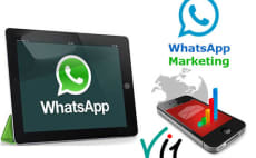 24 Best Whatsapp Services To Buy Online | Fiverr