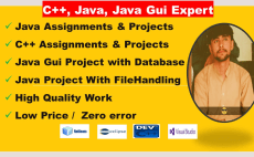 24 Best Java Projects Services To Buy Online | Fiverr