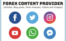 24 Best Forex Services To Buy Online Fiverr -