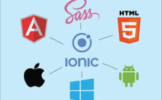 24 Best Ionic Framework Services To Buy Online | Fiverr