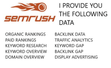 Fiverr / Search Results for 'semrush report'