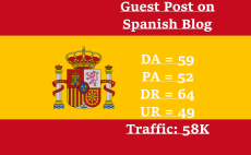 guest post on spanish blog 58k traffic