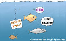 guarantee low bounce rate true keyword targeted traffic