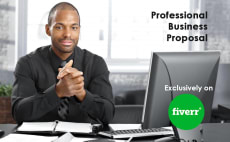 Business plan writer professional