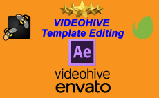 fiverr search results for videohive