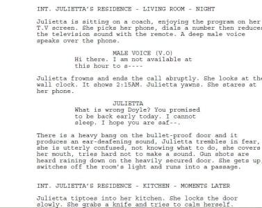 make your story movie script fiverr