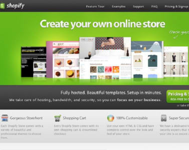 Do Any Kind Of Shopify Theme Customization By Amitsingla - Shopify page templates