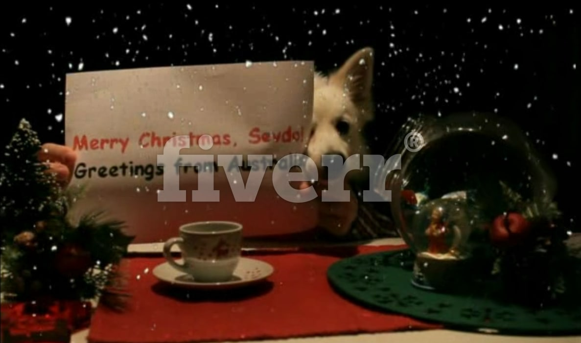 Christmas video greetings gallery greetings card design simple make a christmas video with my dog ozzy m4hsunfo