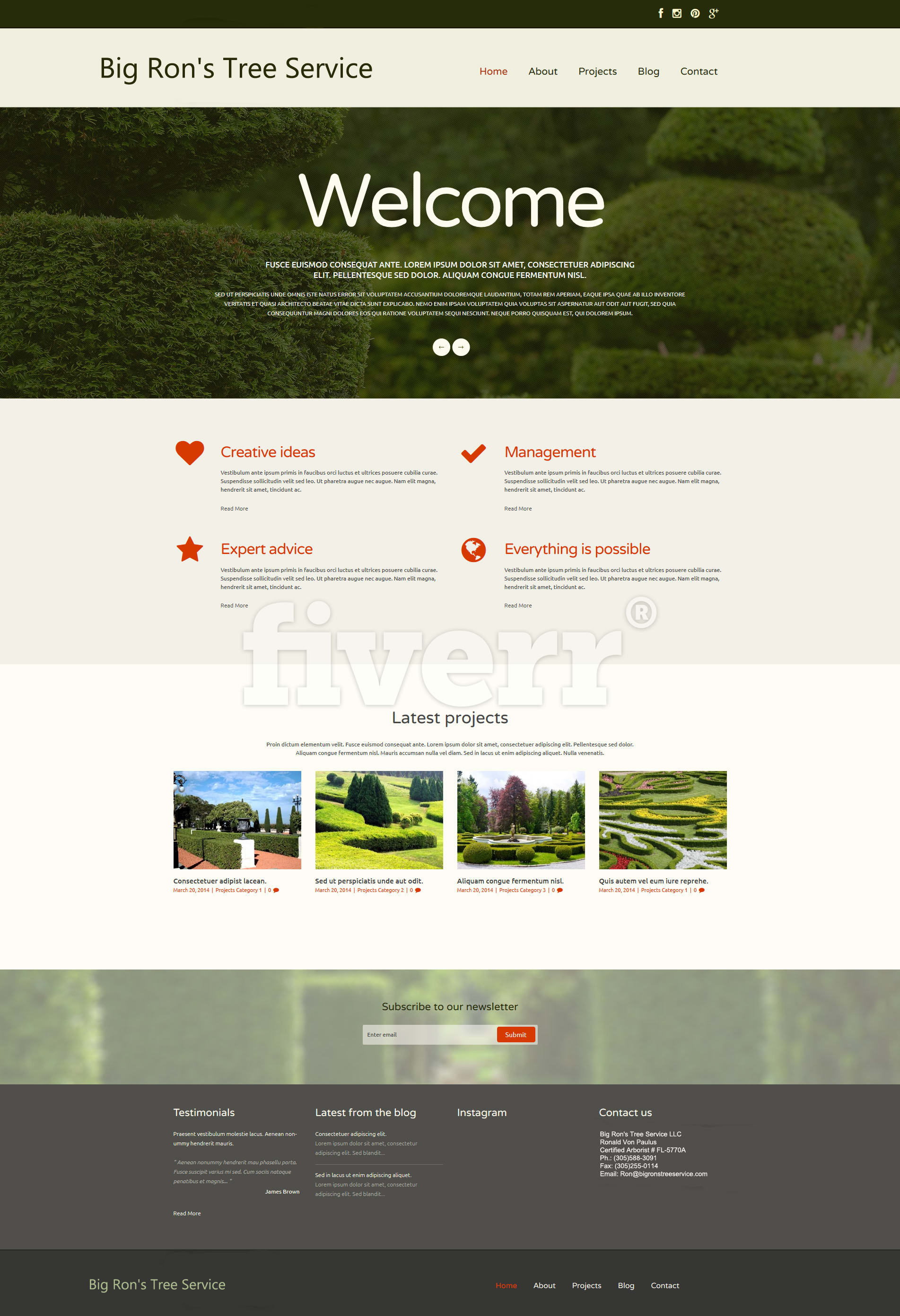 Design Professional Website Template By Emailcubes