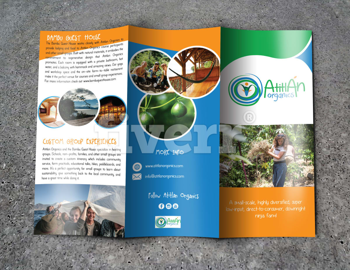 Design Professional Trifold Brochure Or Flyer By Graphic Beach A5 Custom