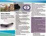 creative-brochure-design_ws_1434626936