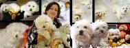 buy-photos-online-photoshopping_ws_1434815021