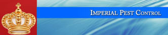 web-banner-design-header_ws_1381691874
