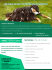 creative-brochure-design_ws_1436454736