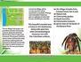 creative-brochure-design_ws_1436551976