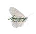 graphics-design_ws_1438189949