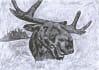 digital-illustration_ws_1390655034