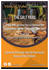 creative-brochure-design_ws_1442406473