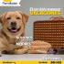 social-media-design_ws_1445725825