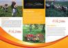 creative-brochure-design_ws_1446194908