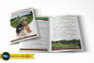 creative-brochure-design_ws_1446705687