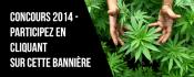 web-banner-design-header_ws_1400813845