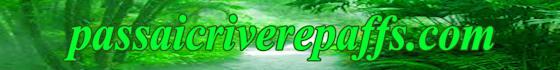 web-banner-design-header_ws_1402469459