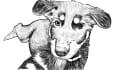 digital-illustration_ws_1450102620