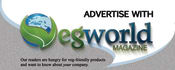 creative-brochure-design_ws_1451867014