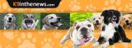 web-banner-design-header_ws_1406220582