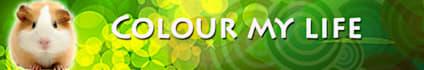 web-banner-design-header_ws_1409823568