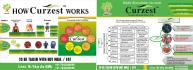 creative-brochure-design_ws_1456761919