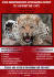creative-brochure-design_ws_1412290518