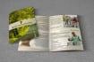 creative-brochure-design_ws_1458310564