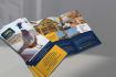 creative-brochure-design_ws_1458868046