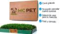 pet-modelling_ws_1459312443