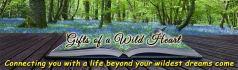 web-banner-design-header_ws_1413791627