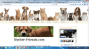 web-programming-services_ws_1460543877