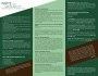 creative-brochure-design_ws_1416641007