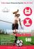creative-brochure-design_ws_1463520023