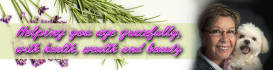 banner-ads_ws_1463583182