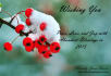 greeting-cards-online_ws_1419272491